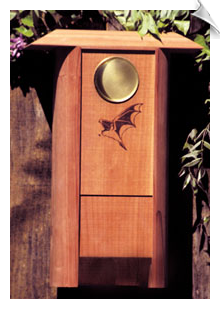 Schrodt - Colony Bat House