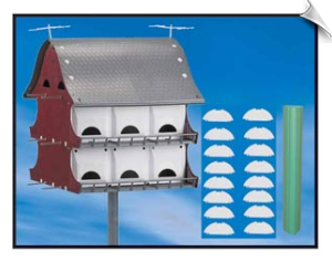 16 Family Purple Martin Kit