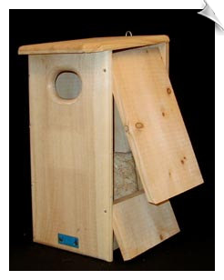 Wood Duck / Hooded Merganser House
