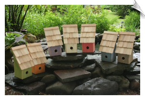 Fruit Coops Birdhouses