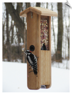 "Woodpecker Feeder with Hanging Cable <br><span style=""color:#1954e9;"">New Item!</span>"
