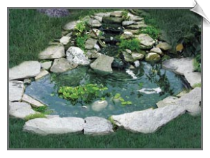 Bird Pond with 3 Tier Cascade