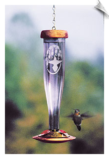 Schrodt Amethyst Single Etched Hummingbird Lantern