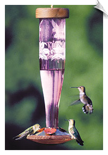 Schrodt - Amethyst Hummingbird Paradise <br>Triple-Etched Lantern