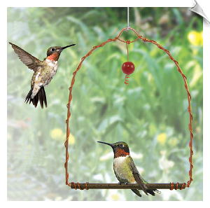 "Copper Hummingbird Swing <br> <span style=""color:#1954e9;"">New Item</span>"
