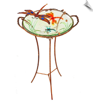Daring Dragonfly Birdbath with Stand