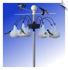 "Eight Family Martin Compound with 8 ""gourds"" and Easy Lift Pole"