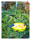 "Handpainted Foliage Snack Hanging Feeder <br><span style=""color:#1954e9;"">New Item!</span>"