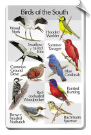 BirdSong IdentiFlyer SongCard <br>Birds of the South